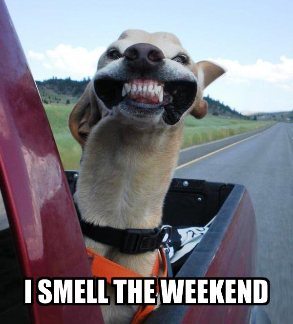 i can smell the weeken coming!